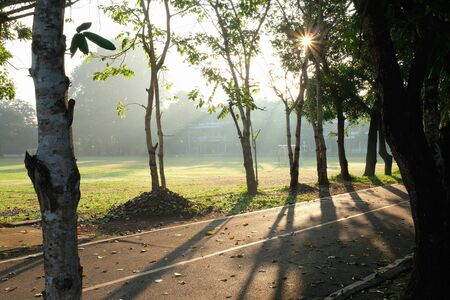 Beautiful nature around the road and landscape scenery background in the morning Imagens