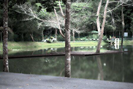 evening lake,