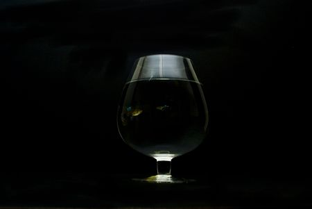 a glass in the dark with a guppy inside