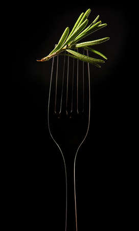 The Fork with Sprig of Rosemary on Black Background Stock Photo