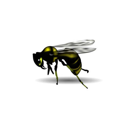 wasps: 3d image of wasps in vector format