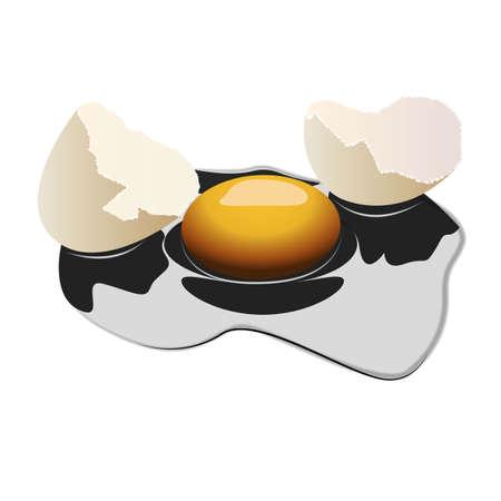 Realistic broken egg on white background. Illustration