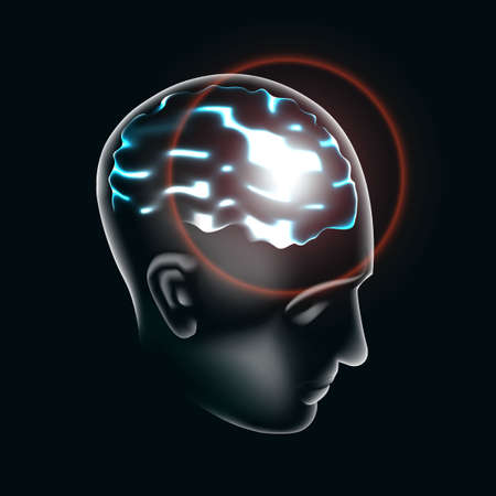The human brain is lit up in 3d illustration. Vector.