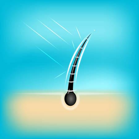 Hair care , prevent split ends vector illustration