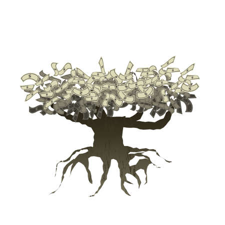 money tree with root isolated on white vector