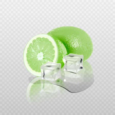 3D realistic transparent vector ice and lime cubes. Vector 일러스트