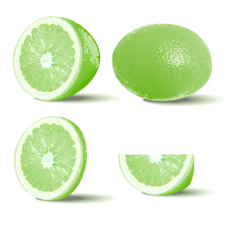 Set slices of lime isolated on white background. Realistic vector illustration.