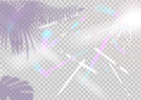Iridescent Background. Holographic Background with Light Glitch Effect. Vector Rainbow Gradient with Sunshine Glare. shade of tropical trees