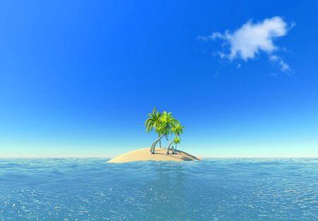 island and palms photo