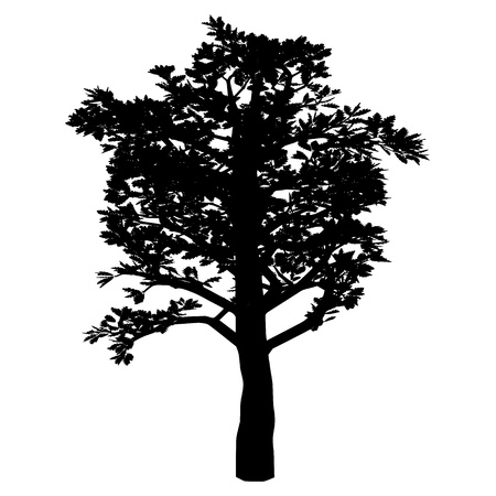 Tree. Isolated. Silhouette Vector