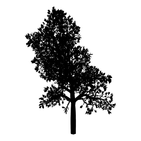 Tree. Isolated. Silhouette Illustration