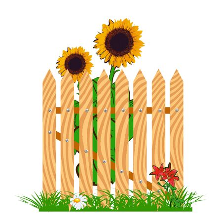 wooden fence and sunflowers - vector Stock Vector - 13285933