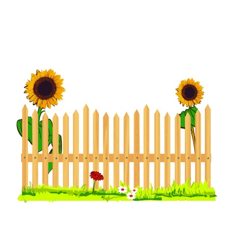 wooden fence and sunflowers - vector
