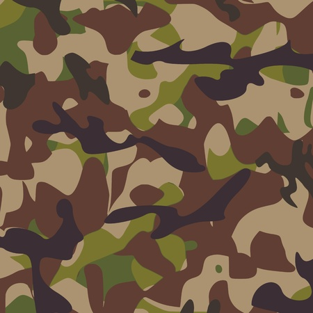 Camouflage pattern - vector Stock Vector - 13363554
