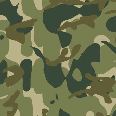 masking: Patr�n de camuflaje - vector Vectores
