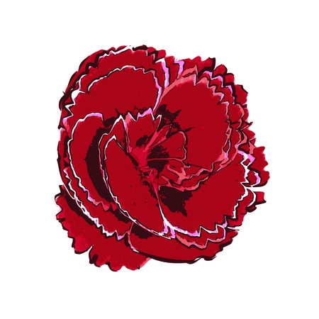 Flower isolated on white - vector Vector