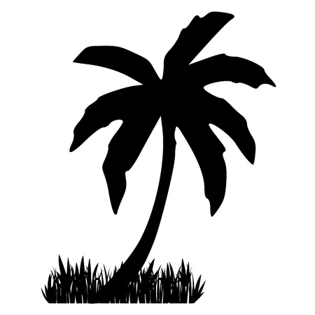 Palm and grass. Silhouette - vector Vector