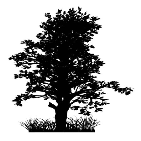 Tree and grass. Silhouette - vector Illustration