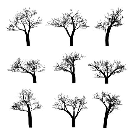 Winter trees - vector Vector