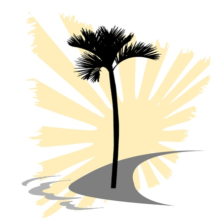 island, palm and  waves - vector Vector