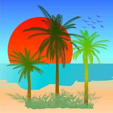 Summer beach scene - vector Stock Vector - 13427316