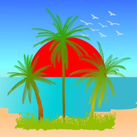 beach scene: Summer beach scene - vector Illustration