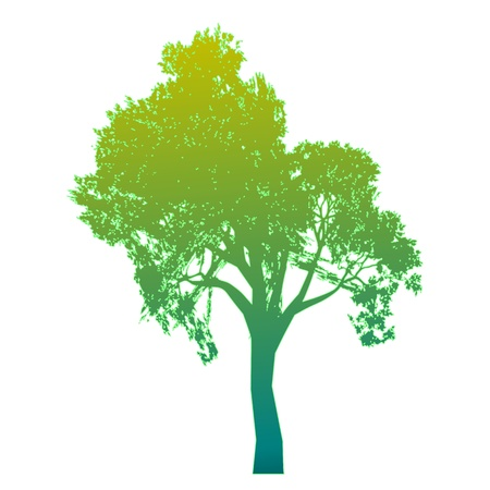 Tree. Isolated - vector