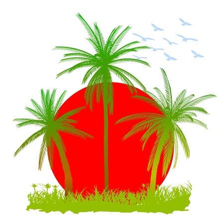 Пальмы, солнце и птицы - векторный