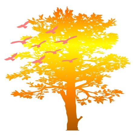autumn tree and birds - vector Stock Vector - 13494459