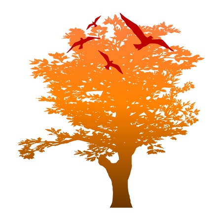 autumn tree and birds - vector Stock Vector - 13494385