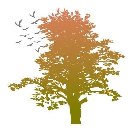 Осенью деревьев и птиц - вектор Иллюстрация