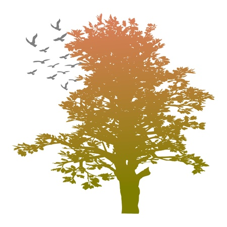 autumn tree and birds - vector