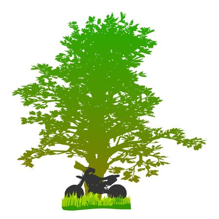 tree and motorcycle - vector Illustration