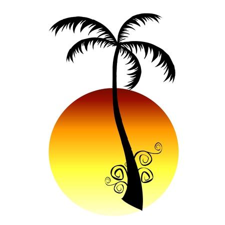 palm and sun  - vector Vector