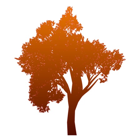 Tree  Isolated - vector Stock Vector - 13494886