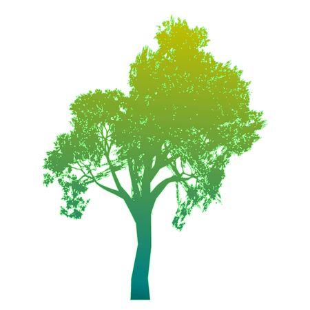 Tree  Isolated - vector