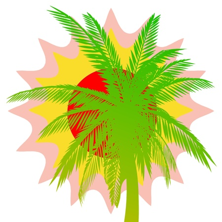 Palm and sun - vector Vector