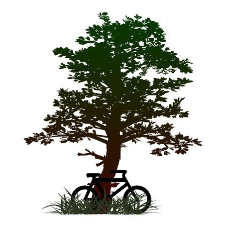 дерево и велосипед - вектор