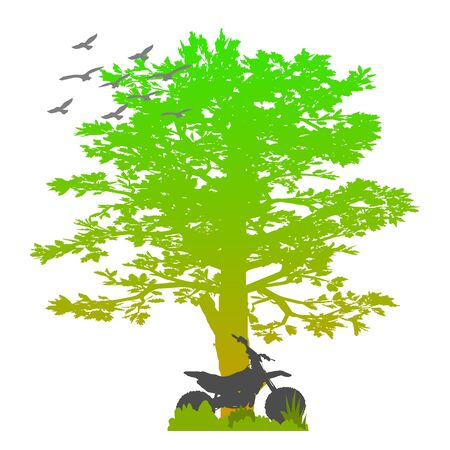tree and motorcycle - vector Vector