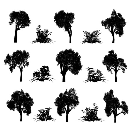 Trees and bush  Illustration