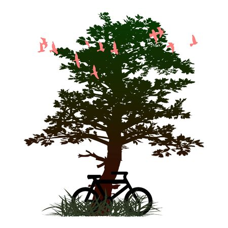 tree and bicycle Vector