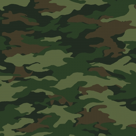 Camouflage pattern Illustration