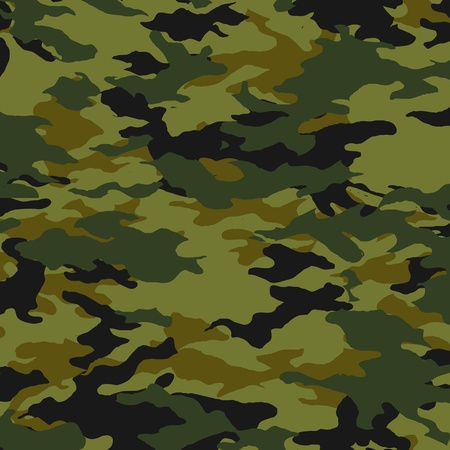 masking: Camuflaje - vector