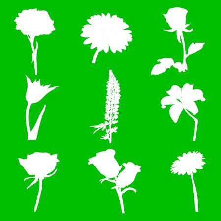 Цветы Иллюстрация