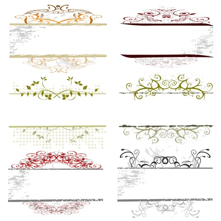 horizontal lines: swirl floral borders for your text