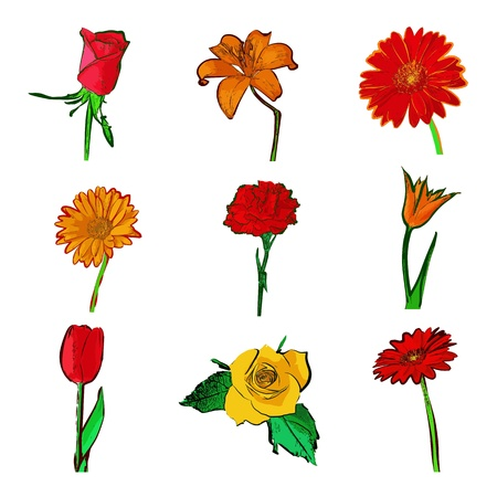 flowers set isolated on white Vector