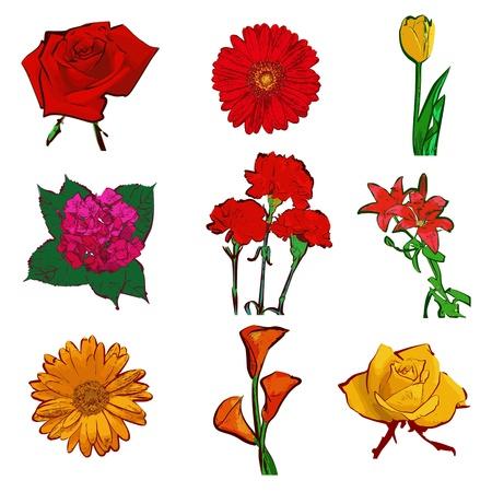 Набор цветов, изолированных на белом Иллюстрация