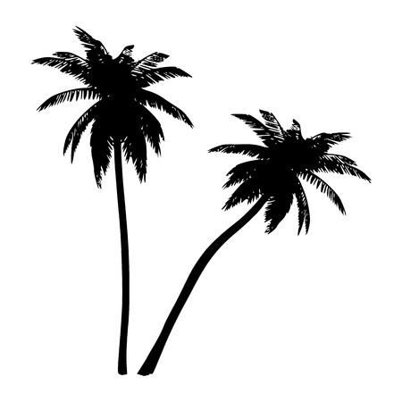 Palms. Isolated. Silhouette Vector