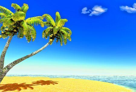 Beach and palms Stock Photo - 14324740