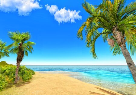 Beach and palms Stock Photo - 14324815